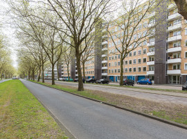 Van Nijenrodeweg